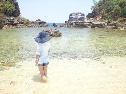 HINP - Shell Island - ChiaChinR