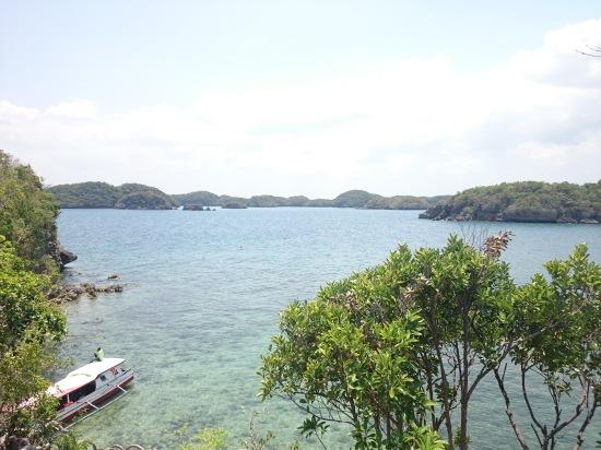 HINP - Virgin Island