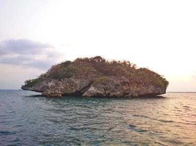 HINP - Bat Island - ChiaChinR